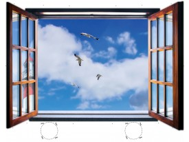 Fotobehang Vogels | Blauw |