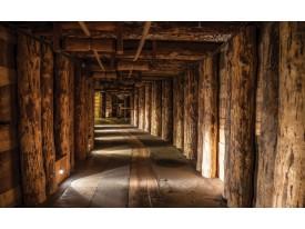 Fotobehang Papier Hout | Bruin | 368x254cm
