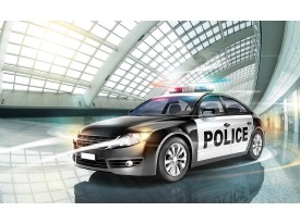 Fotobehang Politieauto   Grijs   416x254