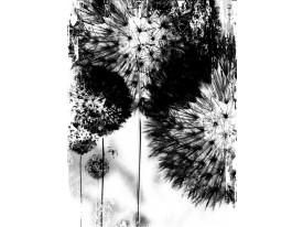 Fotobehang Bloemen | Zwart | 206x275cm