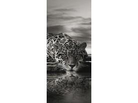 Deursticker Muursticker Luipaard, Dieren | Zwart | 91x211cm