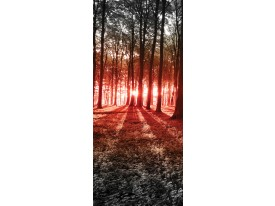 Deursticker Muursticker Bos, Natuur | Rood | 91x211cm