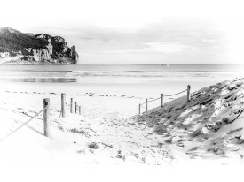 Fotobehang Strand, Zee | Wit | 312x219cm