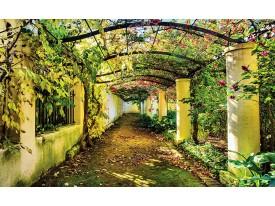 Fotobehang Vlies | Natuur | Groen, Geel | 368x254cm (bxh)
