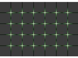 Fotobehang Vlies | Design | Grijs, Groen | 368x254cm (bxh)