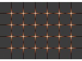 Fotobehang Vlies   Design   Bruin, Grijs   368x254cm (bxh)