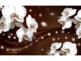 Fotobehang Vlies   Orchideeën, Bloemen   Wit   368x254cm (bxh)