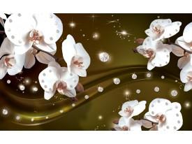 Fotobehang Orchideeën, Bloemen   Wit   312x219cm