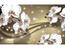 Fotobehang Orchideeën, Bloemen | Wit | 152,5x104cm