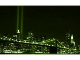 Fotobehang Papier New York | Groen | 368x254cm