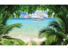 Fotobehang Vlies | Strand, Natuur | Groen | 368x254cm (bxh)