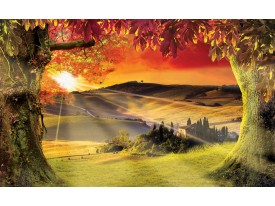 Fotobehang Papier Natuur, Zonsondergang | Oranje | 368x254cm