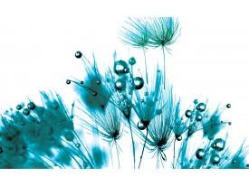 Fotobehang Papier Bloemen | Wit, Turquoise | 254x184cm