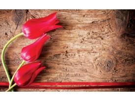 Fotobehang Vlies | Bloemen, Hout | Rood | 368x254cm (bxh)