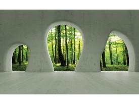 Fotobehang Vlies | Bos, Muur | Groen | 368x254cm (bxh)