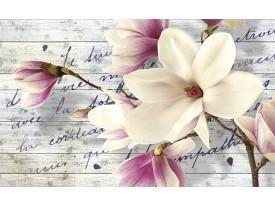 Fotobehang Papier Bloemen, Magnolia | Crème | 254x184cm