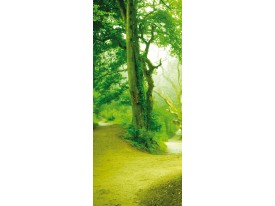 Deursticker Muursticker Abstract   Groen   91x211cm
