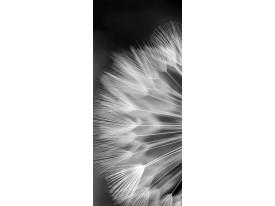 Fotobehang Bloemen | Zwart, Wit | 91x211cm
