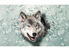 Fotobehang Wolf, Muur | Grijs, Groen | 152,5x104cm