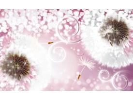Fotobehang Paardenbloem   Roze, Wit   312x219cm