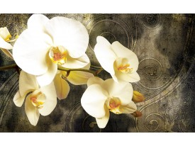 Fotobehang Papier Orchidee, Bloemen | Geel | 254x184cm