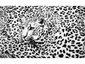 Fotobehang Luipaard | Zwart, Wit | 208x146cm