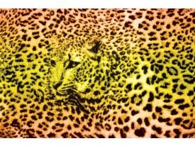 Fotobehang Vlies | Luipaard | Geel, Groen | 368x254cm (bxh)