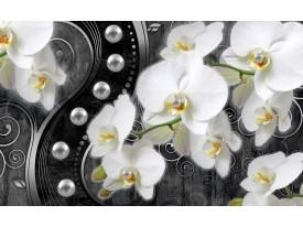Fotobehang Orchidee, Bloemen | Wit, Zwart | 152,5x104cm