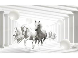 Fotobehang Paarden, Modern | Wit | 312x219cm