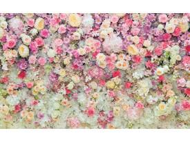 Fotobehang Bloemen | Roze, Crème | 312x219cm
