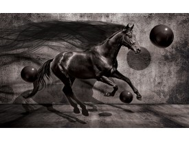 Fotobehang Vlies | Paard, Design | Zwart | 368x254cm (bxh)