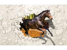 Fotobehang Vlies | Paard, Abstract | Bruin | 368x254cm (bxh)