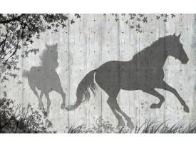 Fotobehang Vlies | Paarden, Modern | Grijs | 368x254cm (bxh)