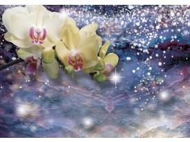 Fotobehang Vlies | Orchideeën, Modern | Blauw | 368x254cm (bxh)