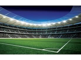 Fotobehang Voetbalveld | Blauw, Groen | 416x254
