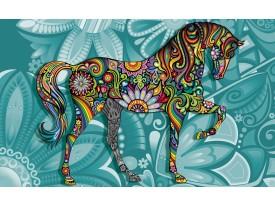 Fotobehang Paard | Turquoise | 312x219cm