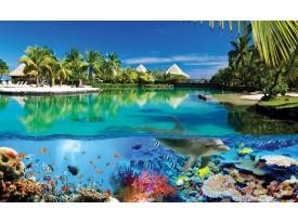 Fotobehang Vlies | Natuur | Blauw, Groen | 368x254cm (bxh)