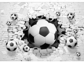 Fotobehang Vlies | Voetbal | Zwart, Wit | 368x254cm (bxh)