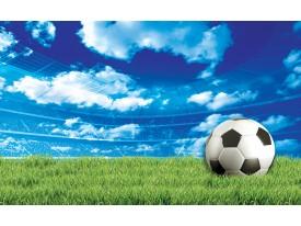 Fotobehang Voetbalveld | Groen, Blauw | 312x219cm