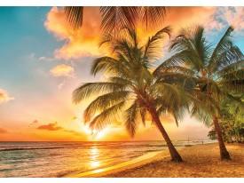 Fotobehang Vlies | Zee, Strand | Goud | 368x254cm (bxh)
