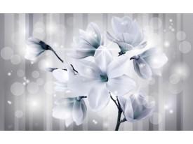 Fotobehang Vlies | Magnolia | Grijs, Turquoise | 368x254cm (bxh)