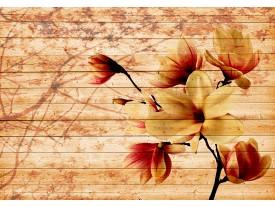 Fotobehang Vlies | Hout, Bloem | Rood, Geel | 368x254cm (bxh)