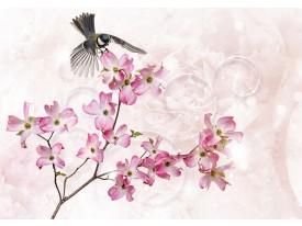 Fotobehang Vlies   Lente, Bloemen   Roze   368x254cm (bxh)