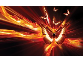 Fotobehang Vlies | Abstract | Oranje, Rood | 368x254cm (bxh)