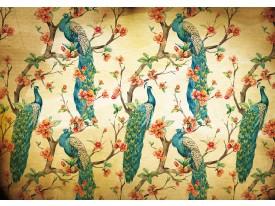 Fotobehang Vlies | Vogels | Bruin, Turquoise | 368x254cm (bxh)