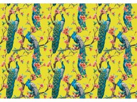 Fotobehang Vlies | Vogels | Turquoise, Geel | 368x254cm (bxh)