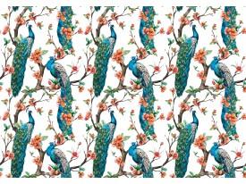 Fotobehang Vlies | Vogels | Blauw, Oranje | 368x254cm (bxh)