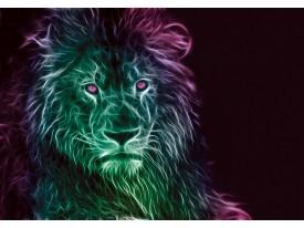 Fotobehang Vlies | Leeuw | Zwart, Paars | 368x254cm (bxh)