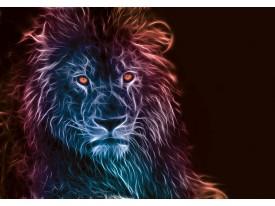 Fotobehang Vlies | Leeuw | Zwart, Blauw | 368x254cm (bxh)