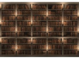 Fotobehang Vlies   Boekenkast   Bruin   368x254cm (bxh)